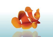 Pesce arancio Immagine Stock