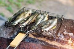 Pesce arrostito con le spezie su fuoco Peschi il barbecue nel giardino all'aperto, un giorno soleggiato caldo fotografie stock libere da diritti