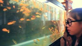 Pesce asiatico felice di sguardo e di sorpresa del bambino in carro armato di pesce archivi video