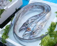 pesce bandiera στην αγορά ψαριών Στοκ Εικόνες