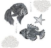 Pesce in bianco e nero Immagine Stock Libera da Diritti