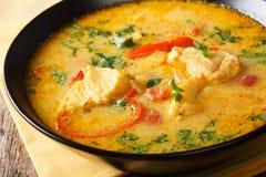 Pesce brasiliano Stew Moqueca Baiana con le verdure e la noce di cocco fotografia stock