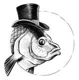 Pesce in cappello Fotografie Stock