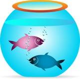 Pesce con la ciotola Fotografie Stock Libere da Diritti