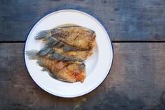 Pesce croccante di gorami nero in piatto bianco su fondo di legno Immagine Stock