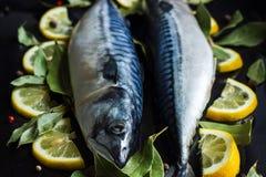 Pesce crudo fresco dello sgombro con le foglie della baia e del limone Fotografie Stock