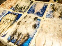 Pesce crudo fresco sul contatore al mercato di Gwangjang Seoul, il Sud Corea immagine stock