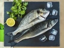 Pesce crudo pronto da cucinare due con il limone sul bordo di pietra dell'ardesia Immagini Stock Libere da Diritti