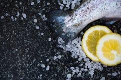 Pesce crudo su fondo scuro Immagine Stock Libera da Diritti