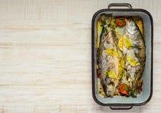 Pesce cucinato con lo spazio della copia Fotografia Stock