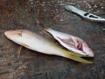 Pesce da vendere ad un mercato caraibico. Fotografia Stock Libera da Diritti
