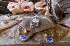 Pesce del crampo nel mercato asiatico Immagini Stock