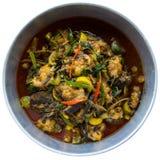 Pesce del curry degli isolati Fotografia Stock