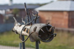 Pesce del ferro Fotografia Stock