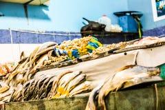Pesce del mercato Fotografia Stock Libera da Diritti