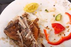 Pesce del residuo dell'alimento fotografia stock libera da diritti
