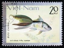 Pesce dell'acquario, circa 1980 Fotografia Stock Libera da Diritti