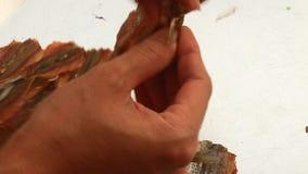 Pesce dell'essiccazione della mano archivi video