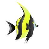 Pesce dell'idolo di moresco Fotografie Stock