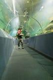 Pesce dell'orologio della gente in tunnel acquatico immagine stock libera da diritti