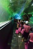 Pesce dell'orologio della gente in tunnel acquatico fotografie stock libere da diritti