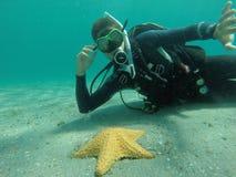 Pesce della stella Fotografia Stock