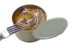 Pesce di ?anned Fotografia Stock