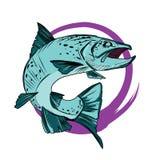 Pesce di cattura della trota Colore del pesce Pesci di vettore Pesce grafico Pesce su un fondo bianco illustrazione vettoriale