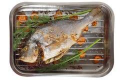 Pesce di Dorade sul barbecue Fotografia Stock Libera da Diritti