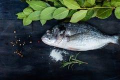 Pesce di Dorado con le foglie e le spezie dell'alloro Immagine Stock