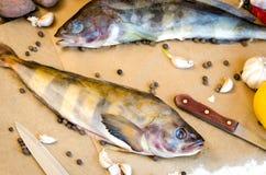 Pesce di Grinling con il pepe del limone dell'aglio delle verdure Fotografia Stock