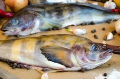 Pesce di Grinling con le verdure Fotografia Stock