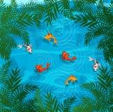 Pesce di Koi in uno stagno Immagini Stock Libere da Diritti