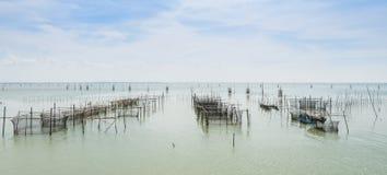 Pesce di mare che coltiva in Tailandia Immagine Stock Libera da Diritti
