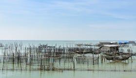 Pesce di mare che coltiva in Tailandia Fotografia Stock