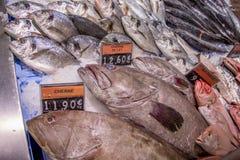 Pesce di mare Pulpo al mercato ittico Fotografia Stock