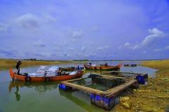 Pesce di trasporto Immagini Stock Libere da Diritti