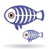 Pesce divertente dei raggi x su un fondo bianco Immagini Stock