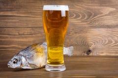 Pesce e birra chiara Immagini Stock Libere da Diritti