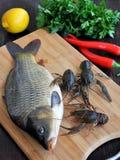 Pesce e gamberi Fotografia Stock
