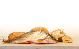 Pesce e pani su fondo bianco Fotografia Stock