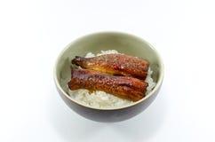 Pesce e riso dell'anguilla della griglia del giapponese su fondo bianco Immagine Stock