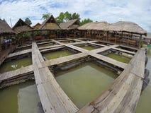 Pesce e ristorante della gabbia Fotografie Stock