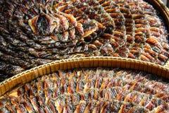 Pesce essiccato Immagini Stock Libere da Diritti