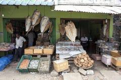 Pesce essiccato che pende dal tetto dei negozi a Jaffna nel Nord dello Sri Lanka Fotografia Stock Libera da Diritti