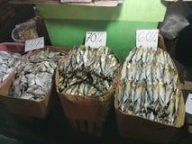 pesce essiccato nel phil immagine stock libera da diritti