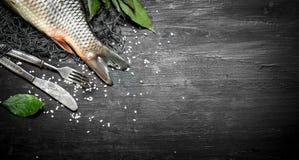 Pesce fresco con i rami di alloro sulla rete da pesca Immagini Stock