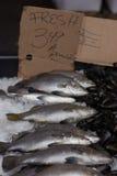 Pesce fresco con per il segno di vendita Fotografie Stock