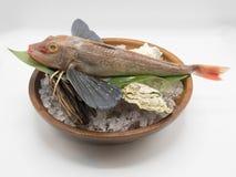 Pesce fresco dal mare pronto per il cuoco in cucina giapponese Fotografia Stock Libera da Diritti