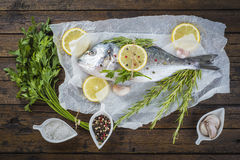 Pesce fresco dell'orata con le erbe e le spezie pronte da cucinare Fotografia Stock